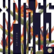 Continuum - Xpress (Addex Remix)