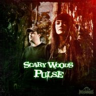 Scary Woods - Falling Mask (Original Mix)