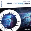 David Surok - Never Lost Your Dream (Distant Identity Remix)