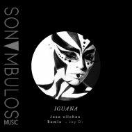 Jose Vilches - Iguana (original Mix)