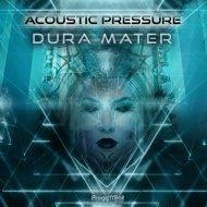 Acoustic Pressure - Arachnoid Mater (Original Mix)