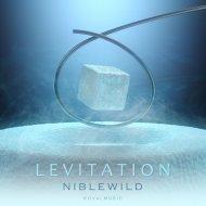 Niblewild - Levitation (Radio Edit)