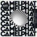 CamelPhat, Jem Cooke - Rabbit Hole (Black Circle Remix)