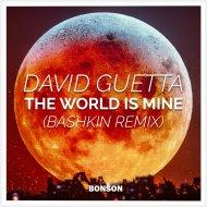 David Guetta - The world is mine (Bashkin Remix)