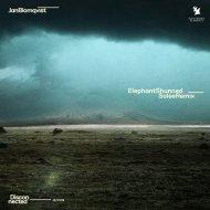 Jan Blomqvist - Elephant Shunned (Solee Extended Remix)