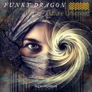 Funky Dragon - Culture Unlimited (Original Mix)
