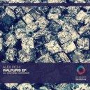 Alex Pich - Walpuris (Original Mix)