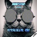 Hunky Fop - Psichedelic Cat (Original Mix)