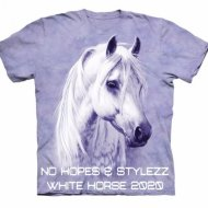 No Hopes, Stylezz - White Horse 2020 (Extended Mix)