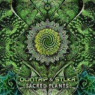 Owntrip & STLKR - Sacred Plants (Original Mix)