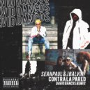 Sean Paul & J Balvin - Contra La Pared (David Dancos Remix)