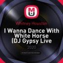 Whitney Houston - I Wanna Dance With White Horse (DJ Gypsy Live Mashup)