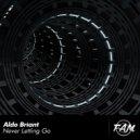 Aldo Briant - Never Letting Go (Original Mix)