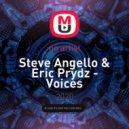 Steve Angello & Eric Prydz - Voices (Negrol Bootleg)