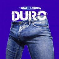 Las Bibas From Vizcaya  - DURO (House of Labs Threesome Remix)