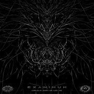 Dunkelheit Music - RawFrequencies (Original mix)