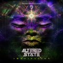 Altered State - Imagination (Original Mix)